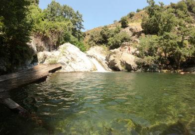 Parco Fluviale del Vergari (VIDEO)
