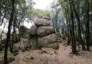 Nei boschi di Nardodipace si trova la Stonehenge di Calabria (VIDEO)